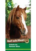Rauf aufs Pferd - Werbeflyer für Vereine