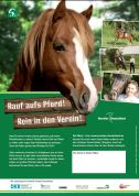 Poster: Rauf aufs Pferd ! Rein in den Verein! (Print)